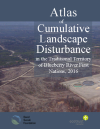 Atlas of cumulative landscape disturbance in the traditional territory of blueberry river